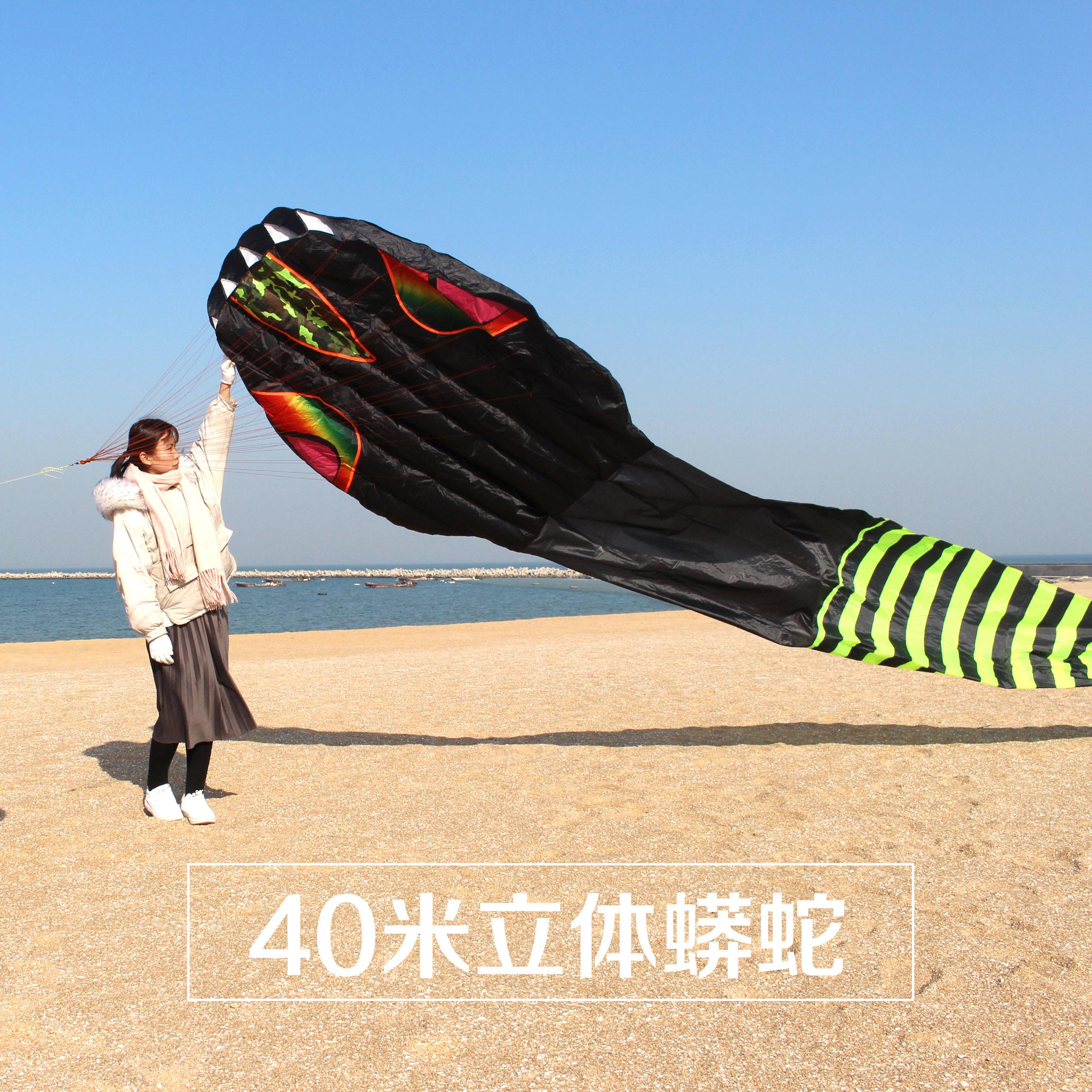 潍坊风筝 高档大型立体蟒蛇大风筝 新款巨型成人风筝 好飞易飞