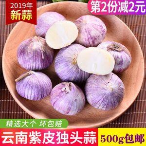 云南特产紫皮大蒜独头蒜 新鲜蔬菜调味料干蒜大蒜头500克黑蒜大个