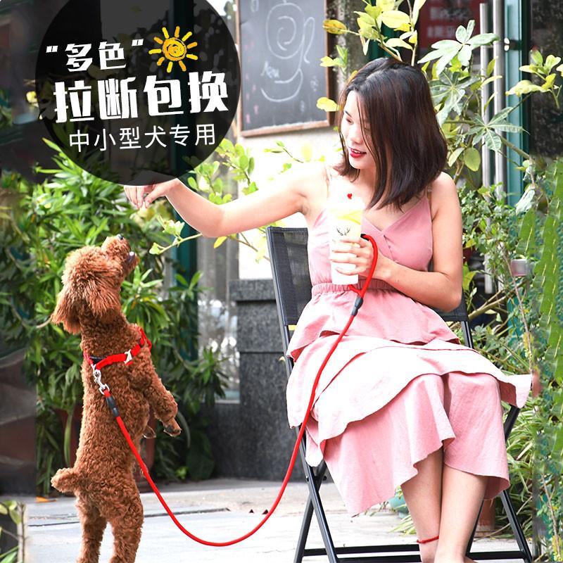 宠物狗狗牵引绳背心式狗链子遛狗绳小型犬幼犬牵狗绳泰迪小狗背带