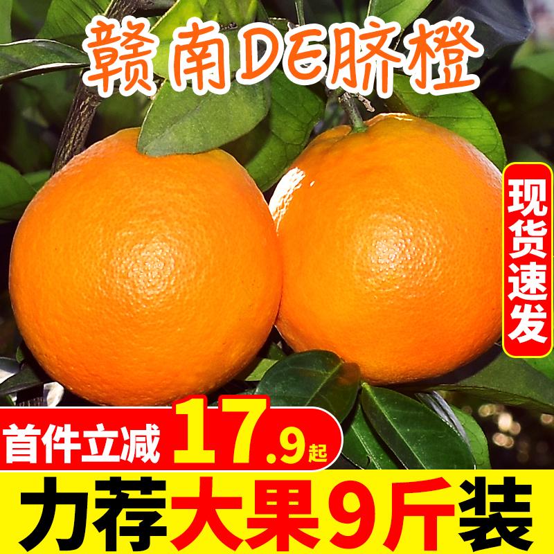 江西赣南脐橙橙子新鲜9斤大果应当季水果手剥冰糖甜橙脐橙10赣州