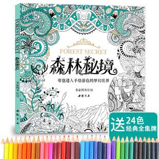 赠24色彩铅森林秘境填涂色书籍成人神秘花园减压图鸦手绘画画正版