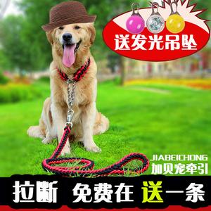 狗繩子狗鏈子大型犬金毛中型犬牽引遛狗繩鐵P鏈項圈薩摩狗狗用品