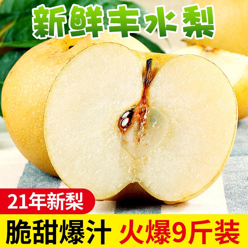 山东新鲜梨子当季10斤梨莱阳丰水梨