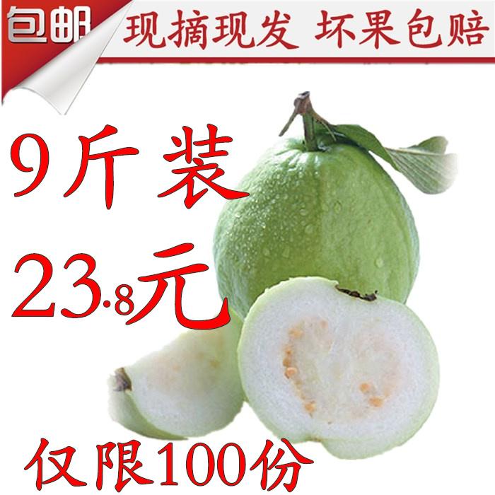 广西新鲜番石榴芭乐 农家特产水果 现摘现发 清脆香甜  9斤包邮