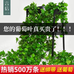 吊顶装 缠绕藤蔓 假花塑料绿叶 花藤 树叶装 饰 仿真葡萄叶 藤条