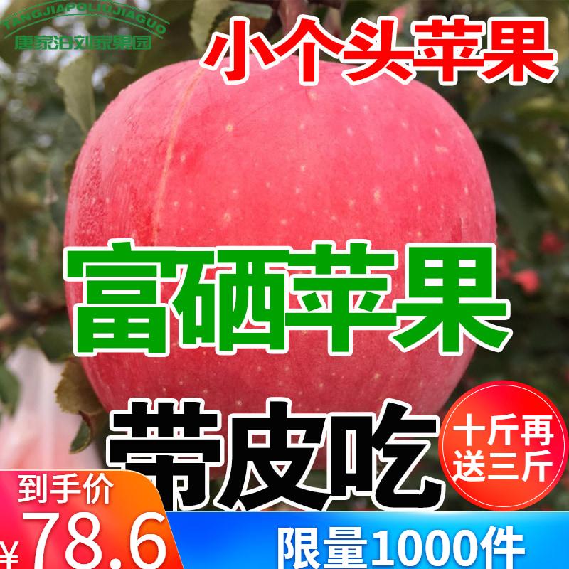 山东烟台苹果水果新鲜脆甜栖霞红富士陕西冰糖心吃的整箱包邮13斤