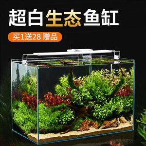 超白玻璃桌面客厅生态小型斗鱼造景