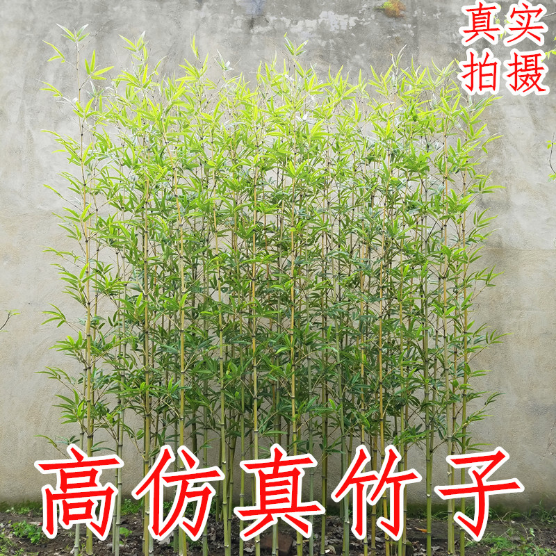 仿真竹子客厅室内装饰假竹子隔断屏风仿真绿植假竹子仿真植物造景