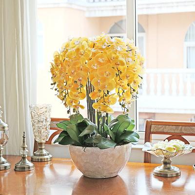 和家手感仿真蝴蝶兰套装绿植盆栽花艺室内客厅干花摆设装饰假花卉