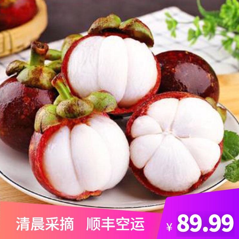 山竹の新鮮な果物は季節の熱帯の妊婦のタイが今摘んで3斤の順豊の大きい果実の5旬の甘い油の麻の竹を出します。