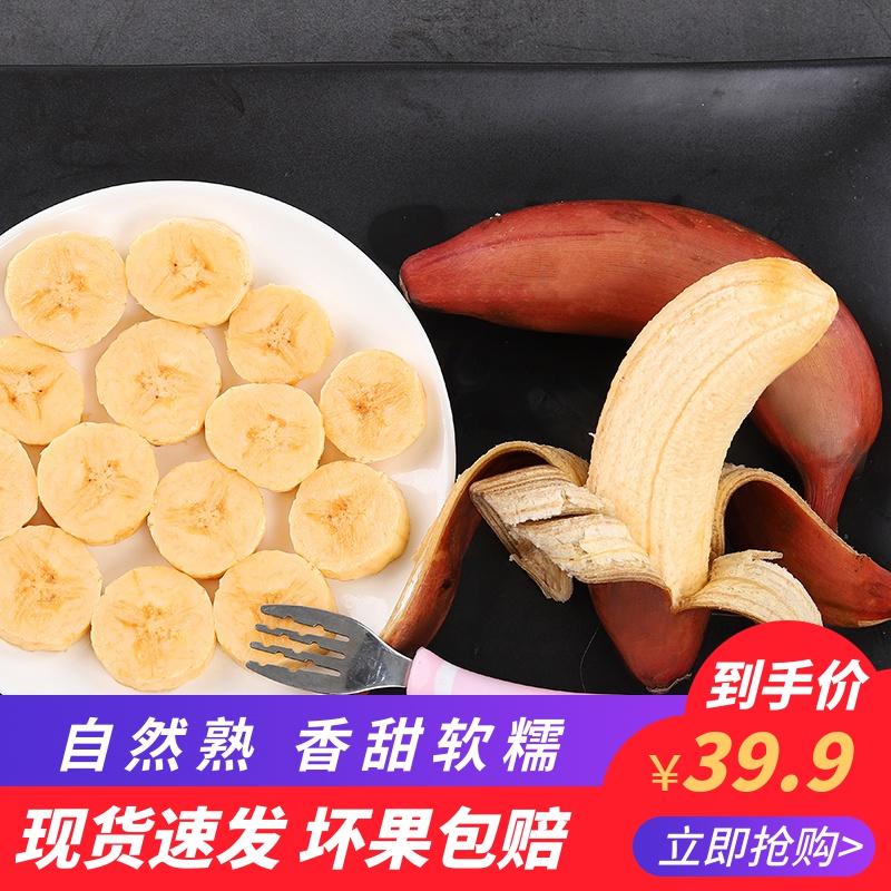 福建红皮香蕉新鲜当季水果5斤包邮自然熟10土楼的红色红美人香焦