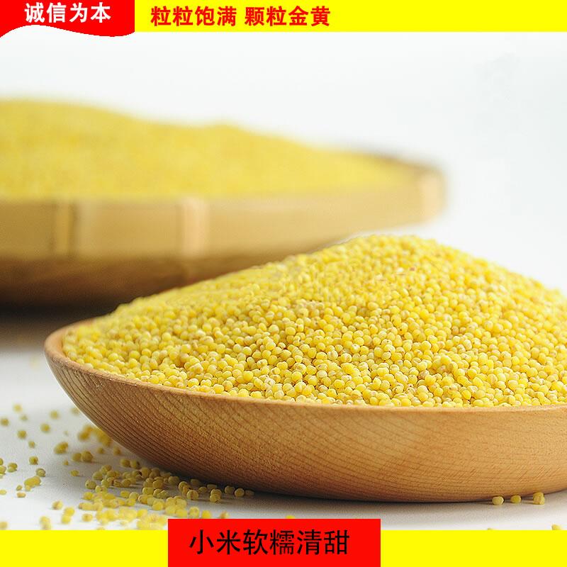 Guyue Kangyuan northeast Chaoyang farmer coarse grain in 2020 Xiaohuang rice 5kg 2.5kg new rice millet porridge