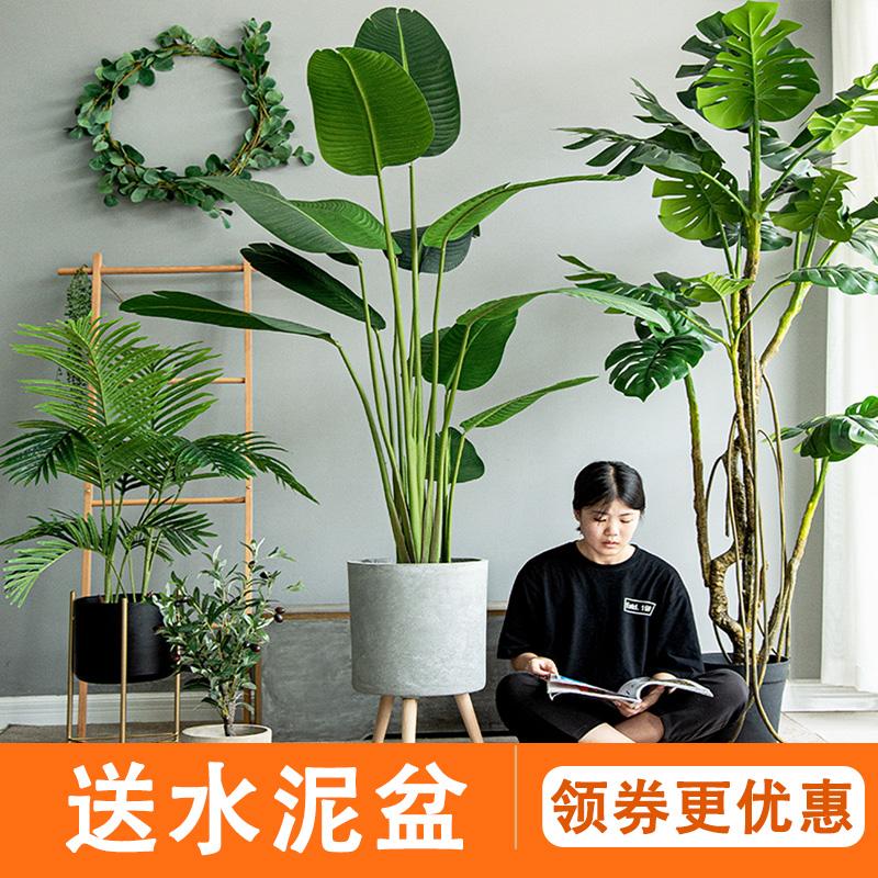 七茉仿真植物装饰大型北欧假绿植盆栽摆件旅人蕉龟背竹散尾葵落地