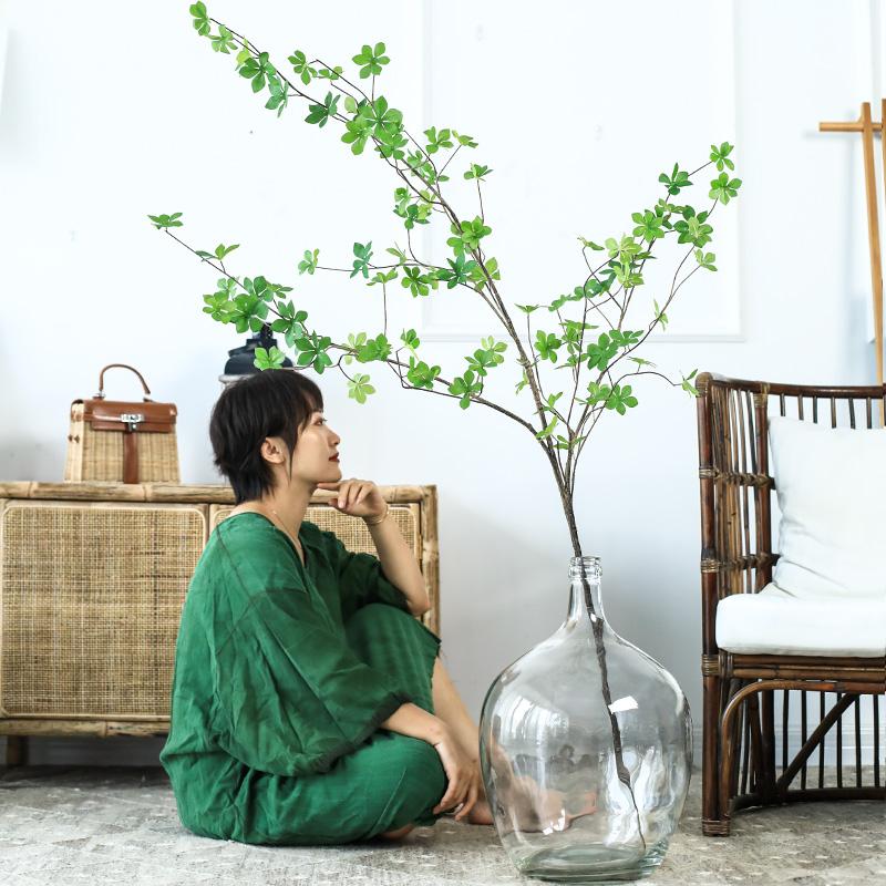 【七茉】北欧简约大肚玻璃花瓶日本吊钟马醉木插花水培落地透明大