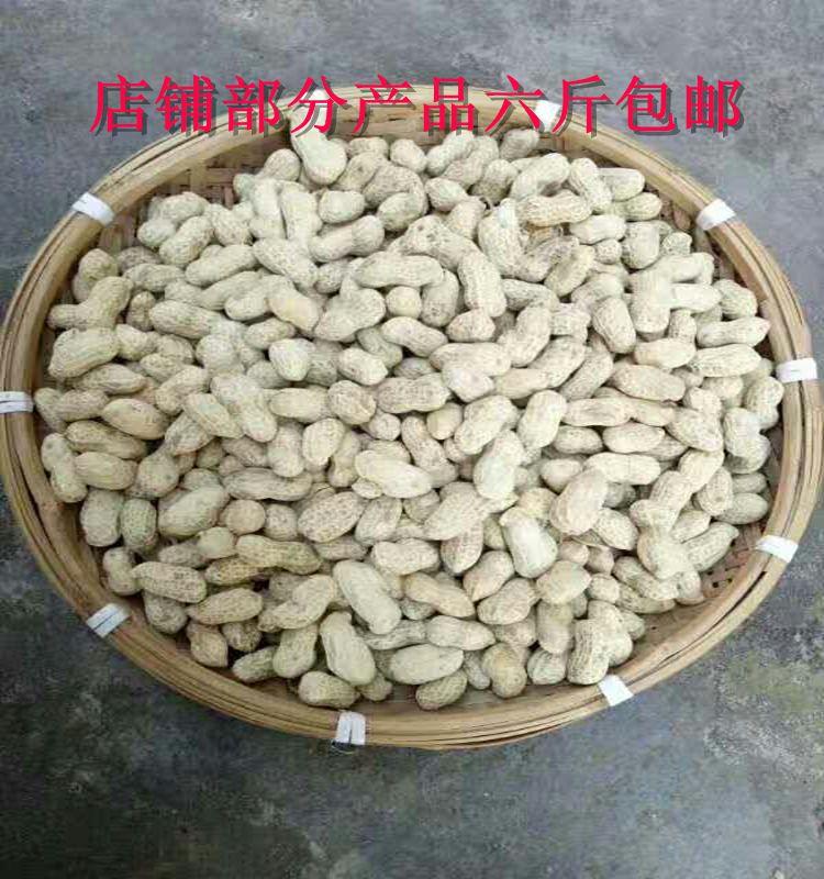 新水煮花生原味农家咸干天然晒干花生500g 广东河源和平客家特产