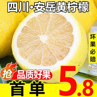 新鲜水果一二级皮薄小香水青柠檬6 安岳黄柠檬鲜果5.5斤大果当季