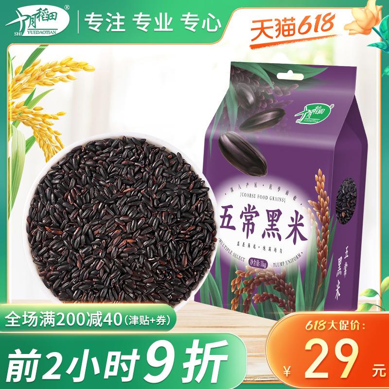 买1送1 十月稻田五常长粒黑米东北黑糙米农家产五谷杂粮真空装1kg