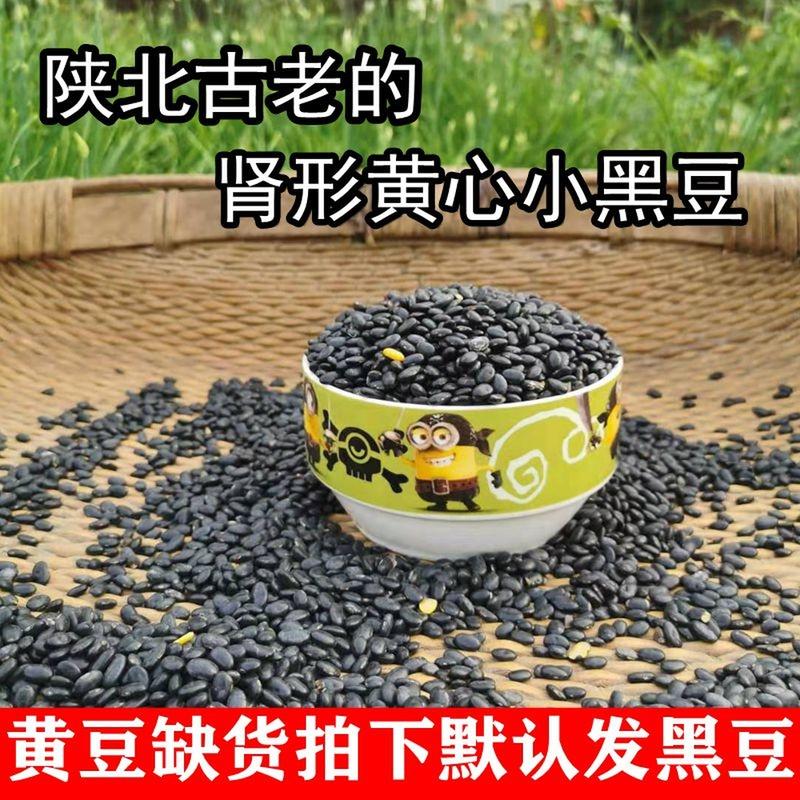 陝北農家の愚かなダイズは遺伝子を回転しないで長い粒の古い品種の腎臓の形の土の腰の豆がもやしを出して豆の500グラムをのり付けします。