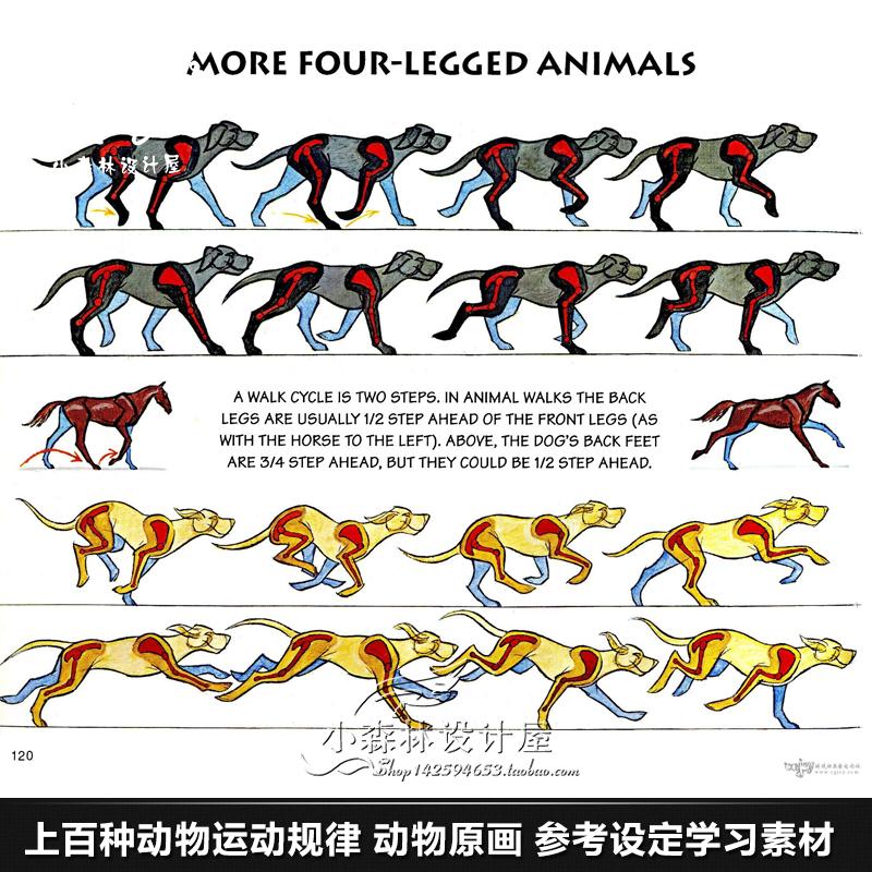 上百种动物运动规律 动物原画设计动漫游戏绘画参考设定学习素材