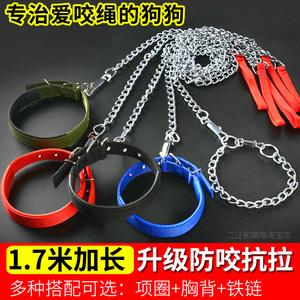 领1元券购买铁链泰迪金毛遛狗绳小型大型犬项圈