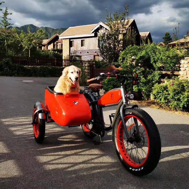 复古雪地胎哈雷电动边三轮摩托车大型宠物狗推车助动沙滩自行车