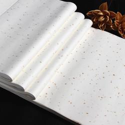 四尺六尺加厚半生半熟洒金宣纸 对开条屏描金龙书法创作宣纸批发