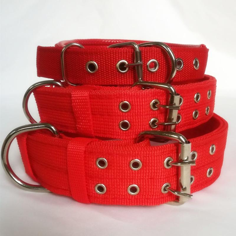 Dog collar large dog golden collar dog collar medium dog collar Labrador Samoye collar