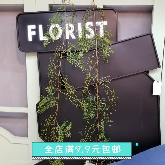 北欧の逸品は黒骨の芒のシミュレーションをして、花の緑の植が藤のつるのワラビ種類の植物の鉄の線ワラビを巻いて装飾します。