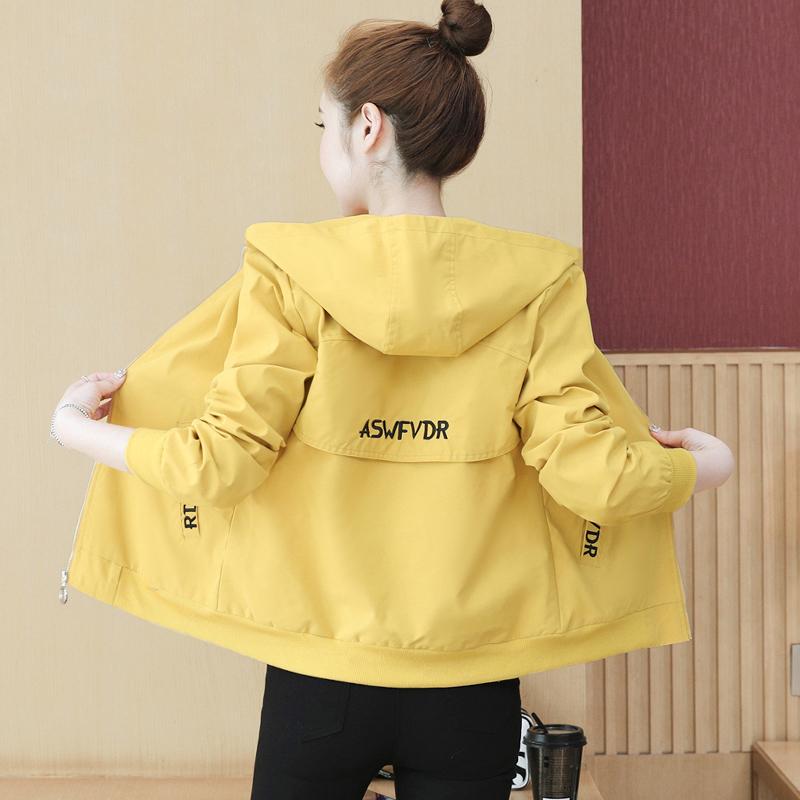 春季小外套女秋冬百搭春装202019年新款潮韩版女士短款夹克衫春款图片