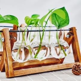 创意木架水培花瓶绿萝植物玻璃花器客厅小容器办公室桌面装饰摆件