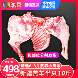 优贡新疆草原半只羔羊10斤新鲜羊排