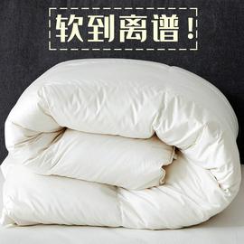 超柔软!全棉九孔纤维被加厚保暖被子冬被棉被春秋被冬天被芯10斤图片