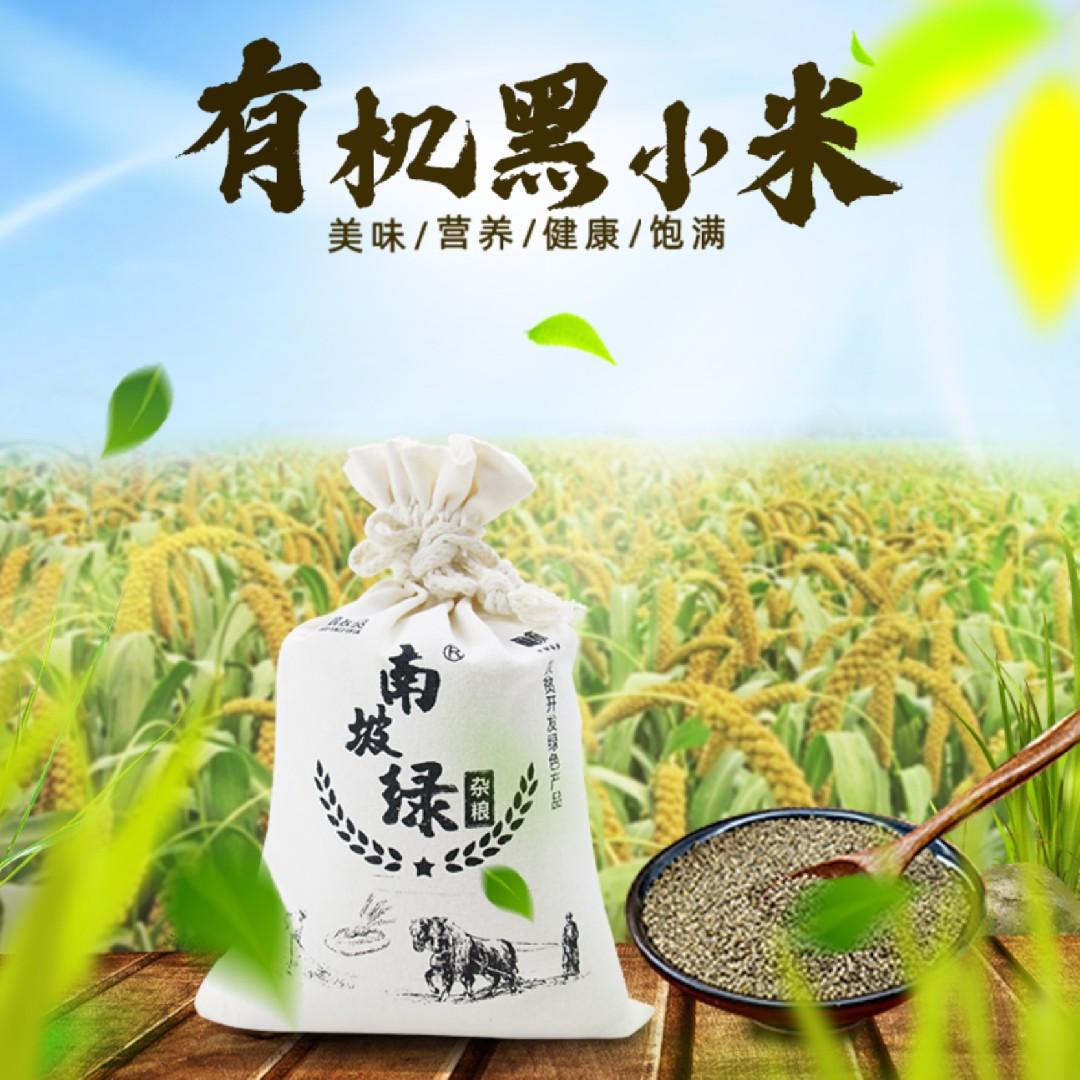山西农家自种粗粮老人米月子黑小米