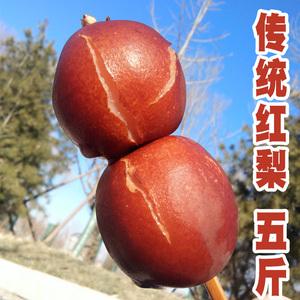 魏县特产红梨5斤2500g新鲜包邮 农家正宗酸梨水果整箱红皮梨产地