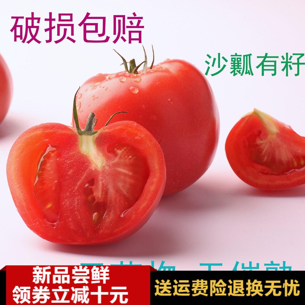 【品质顺丰】番茄西红柿出口 自然熟西红柿 新疆水果 5斤新鲜包邮