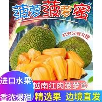 越南进口红肉菠萝蜜一整个红心新鲜水果当季整箱斤现摘现发波罗蜜