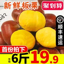 新鲜丹东板栗带箱6斤生栗子