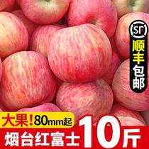 烟台苹果水果新鲜红富士一级当季整箱10斤装带丑应季脆甜栖霞山东