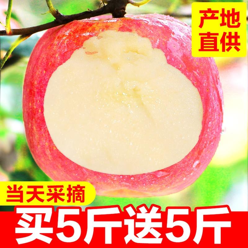 Яблочные фрукты новый пресная бесплатная доставка по китаю сезон красный Fuji FCL 10 кг оптовые продажи Теперь выбор сезона Цинпин фруктов