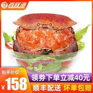 爱尔兰面包蟹1.6-2.0kg/2只新鲜熟冻海鲜水产特大超大螃蟹黄金蟹