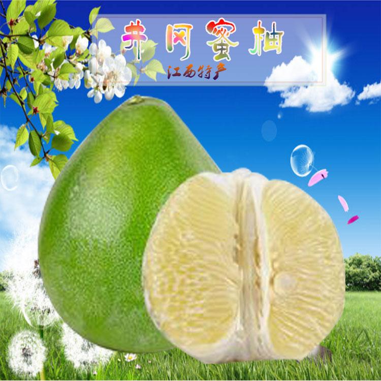 江西特产井岗蜜柚矮晚柚水果新鲜白柚子蜜柚孕妇白心柚沙田柚