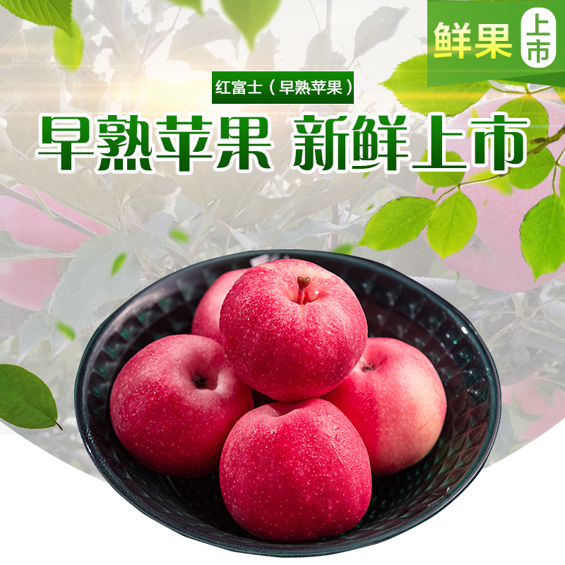 Red Fuji early maturing apple sweet crisp tender Pingliang plateau Zhuanglang apple box 10 jin 13 Jin package
