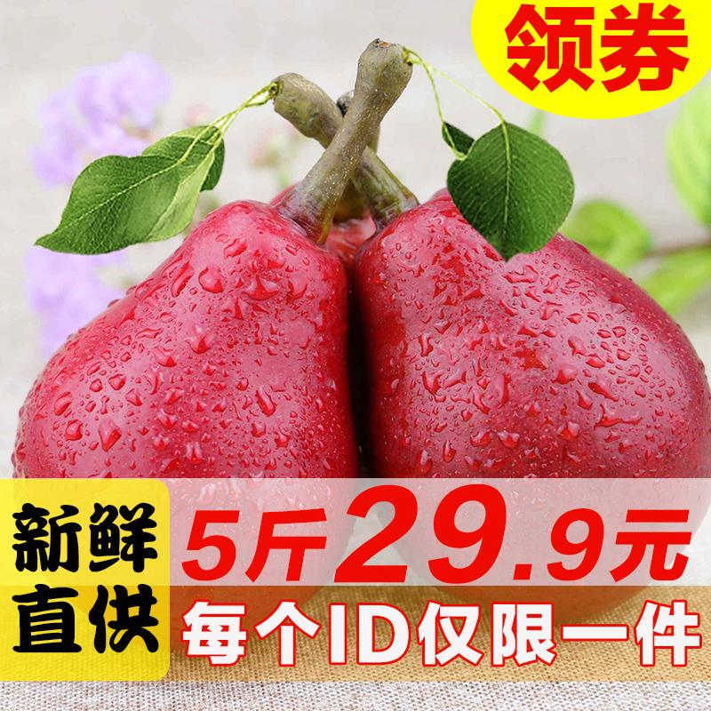 新鲜现摘现发秦岭红啤梨水果5斤包邮红皮梨太婆梨  放软吃的梨子