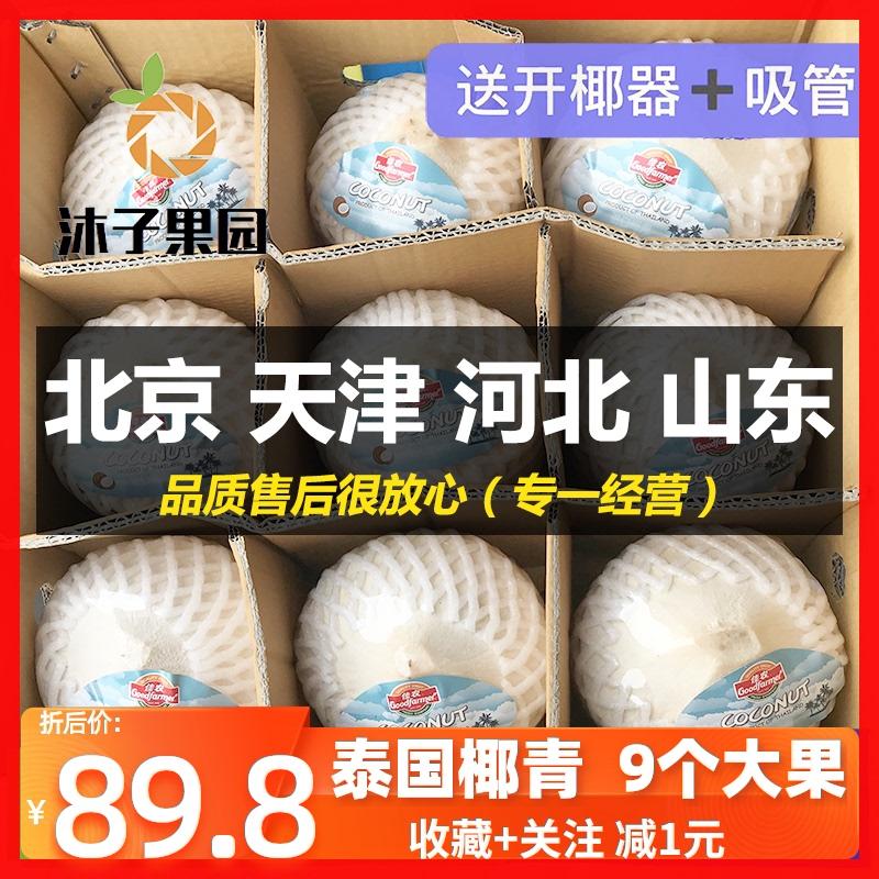 泰国椰青 9颗 佳农 海风椰子 椰子冻 新鲜椰子 孕妇水果 香椰奶椰