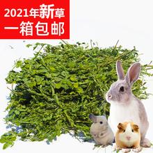 苜蓿草2021年新草 兔子龙猫牧草兔粮豚鼠饲料干草毛重1000克