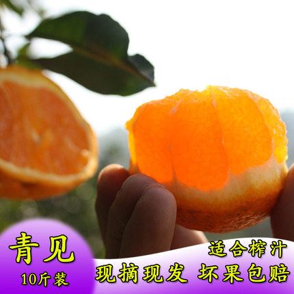 新鲜蒲江丹棱早熟丑橘青见耙耙柑桔子应季时令水果大果10斤包邮