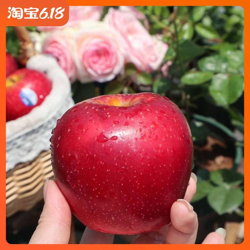 【顺丰包邮】新西兰红玫瑰苹果进口甜脆苹果新鲜水果