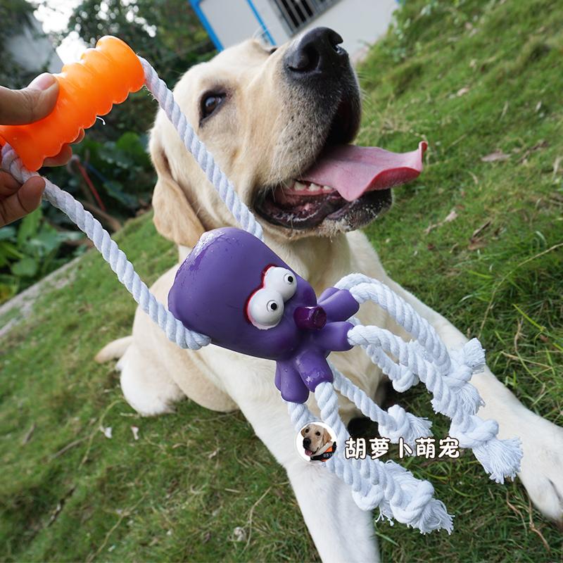 Детские игрушки / Товары для активного отдыха Артикул 540902604757