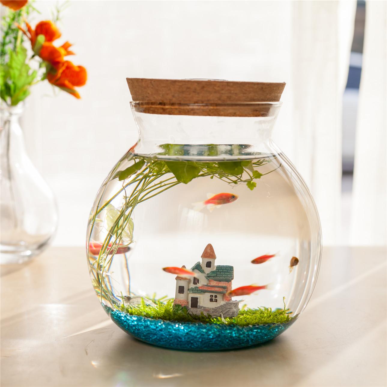 Креативные аквариумы Артикул 537387595470