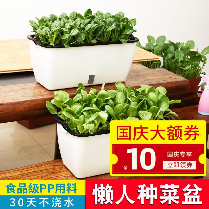 懒人自动吸水种菜盆长条方形花盆蔬菜种植箱家庭阳台花槽多肉养花限8000张券